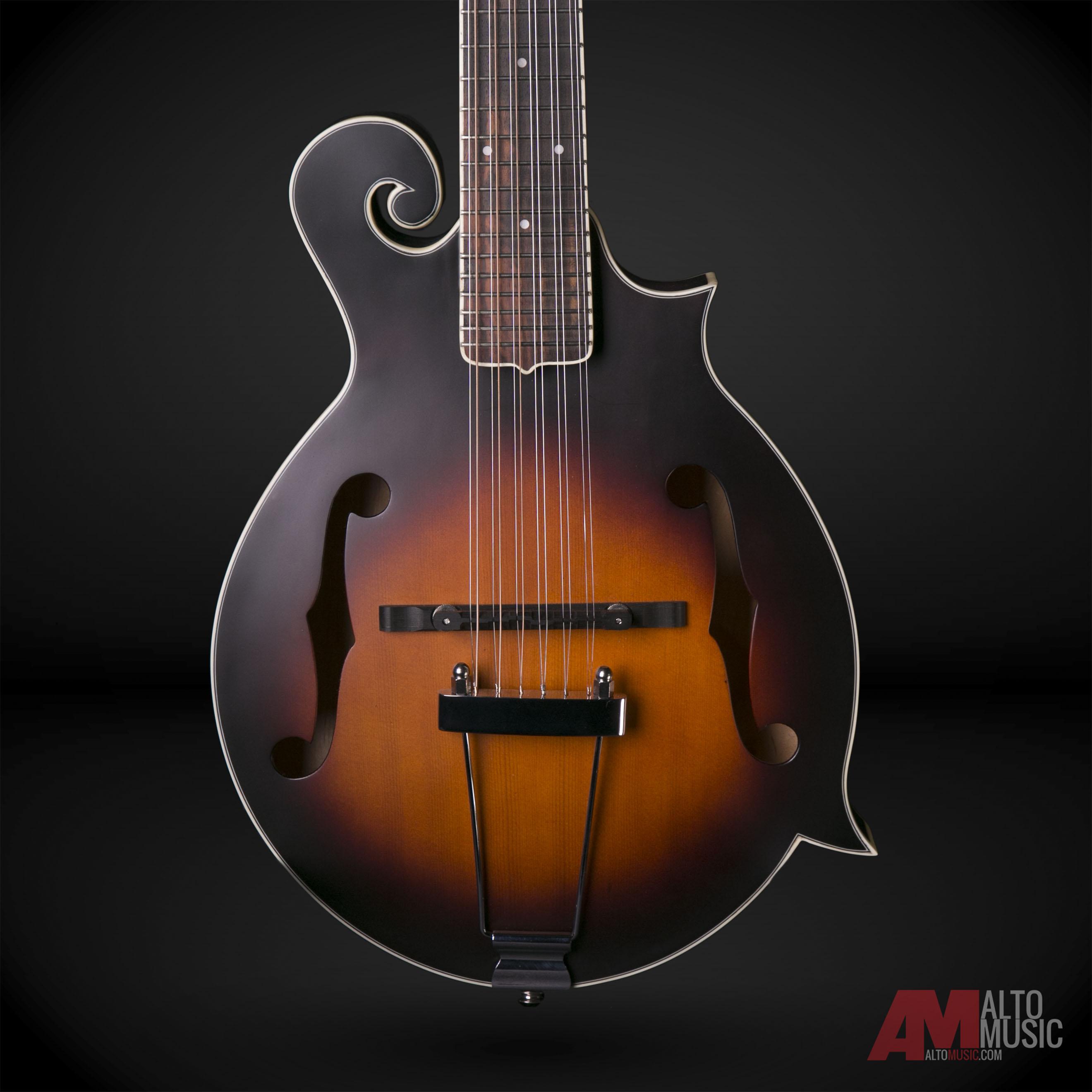 Gold Tone F-12 Long Scale 12-String Manditar Mando/Guita