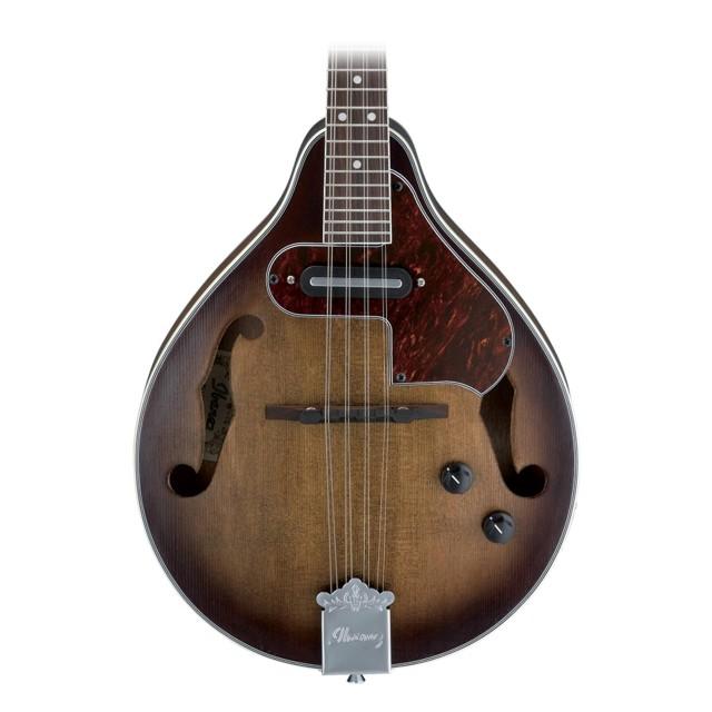 Acoustic/Electric Mandolins