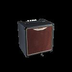 Ashdown AAA Evolution AAA-30-8 Bass Combo