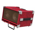 "Phil Jones Bass Cub Amp in Red 100W 2x5"" Combo"