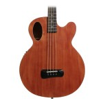 Spector Timbre Acoustic-Electric Bass - Walnut Stain