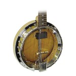 Gold Tone GT-500 Banjitar Rosewood 6 String Banjo
