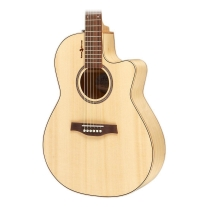 Seagull Natural Elements Limited Edition Acoustic/Elec Guitar in Natural