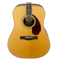 Fender Paramount Series PM-1 Deluxe Dreadnought Acoustic Guitar w/ Case