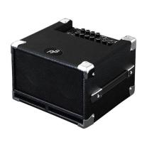 Phil Jones Bass Cub Amp 100W 2X5In Speakers in Black
