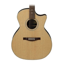 Eastman AC222CE Grand Auditorium Acoustic/Electric Guitar