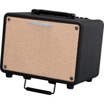 Ibanez T30 Troubadour 30W 1x8 Acoustic Guitar Amplifier