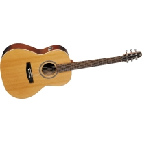 Seagull Coastline Folk Cedar Acoustic Guitar Top Cherry
