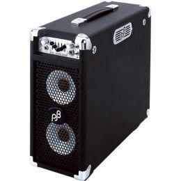 "P: BBC Bass Combo Amp ""Briefcase"""