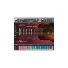 Prominy Hummingbird Virtual Instrument